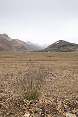 high lands (inga heida) Tags: ingaheiða iceland landmannalaugar landmannalaugahringurinn southiceland canon eos 5 m4 canon5dmark4