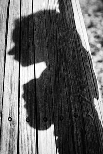 20180815_4344_7D2-90 Kaylee's shadow (227/365)