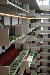 2018-08-FL-194464 (acme london) Tags: atlanta atrium balcony balustrade concrete corridor downtown foyer georgia hotel hyatt hyattregency johnportman landscaping planting railing