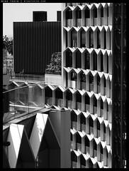 _PF03887 copy (mingthein) Tags: thein onn ming photohorologer mingtheincom availablelight architecture abstract geometry block form bw blackandwhite monochrome singapore olympus pen f penf micro four thirds m43 microfourthirds micro43 panasonic lumix g 12323556 35100456