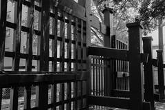 Kanei-ji's Kuromon- back (Rekishi no Tabi) Tags: tokyo kaneiji shogitai bakumatsu bakumatsuperiod japan monochrome entsuji buddhist temple gate blackgate japanesearchitecture edoperiod edo edoperiodarchitecture