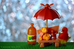 A HOT DAY IN THE SUN WITH A BIG BOTTLE OF ORANGE JUICE (Anne-Miek Bibbe) Tags: happyteddybeartuesday speelgoed canoneos700d canoneosrebelt5idslr annemiekbibbe bibbe nederland 2018 toy spielzeug giocattoli juguetes bringuedos jouets bear teddybear beertje teddybeer beer speelgoedbeer nounours minibeer minibear oranje arancione larnaja orange