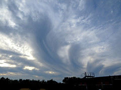 Altocumulus virga (Deutscher Wetterdienst (DWD)) Tags: himmel sky wolken clouds virga fallstreifen altocumulus