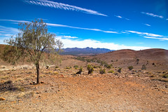 039A0184 (bon97900) Tags: 2018 easter2018quornweekend farnorth flindersranges huckslookout landscapes southaustralia
