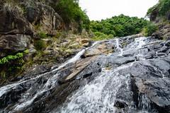 DSC_1857 (sch0705) Tags: hk hiking shuilochostream lantau stream
