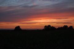 Redhill sunset 060818 - DSC_0907 (Leslie Platt) Tags: tarporley cheshirewestchester redhillsunset exposureadjusted straightened