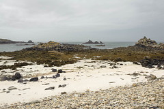 Contraste (patoche21) Tags: bretagne europe finistere flore france marin nature naturel paysage galets grisaille littoral mer plage roche rocher sable patrickbouchenard brittany landscape coast coastline seaboard côte beach sea weather pebble stone rock