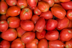 red tomatoes background (svetoslavradkov) Tags: red tomato agriculture food fresh healthy nature organic vegetable vegetarian closeup color green juicy market small garden harvest pile summer background diet eating fruit group ingredient isolated natural nutrition raw ripe salad tomatoes branch bunch cherry cherrytomatoes cooking freshness gourmet macro nobody plant roasted round rustic tasty top vegan view