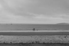 Landscape Bostocks (timnutt) Tags: 35f2wr acros 35mm fujifilm sea ocean wales llyn beach child monochrome lleyn abersoch xt2 fuji bw mono family blackandwhite children holiday