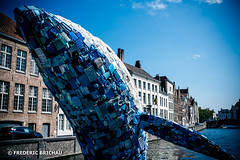 Save The Planet (fred SHOOT ME AGAIN) Tags: ecologie nature plastique plastic pollution baleine bruges brugge