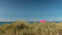 Gouville_0818-5 (Mich.Ka) Tags: gouvillesurmer normandie beach ciel dune extérieur herbe landcape manche mer minimalisme minimaliste nature parasol paysage pink plage plante rose sea simple sky végétation
