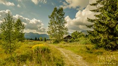 Landscape (pandp.snowflake) Tags: chalet france mountains summer summer2017 trees treesforest verchaix auvergnerhônealpes fr