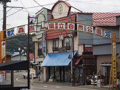 the gate in front of Ani-Maeda station (murozo) Tags: gate animaeda station road house kitaakita akita japan town ゲート 阿仁前田駅 駅 道 家 北秋田 秋田 日本