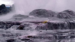 NZ Roturoa Geyser (gerard eder) Tags: world travel reise viajes oceania newzealand roturoa geyser landscape landschaft natur nature naturaleza paisajes panorama outdoor
