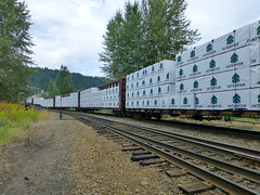 Outgoing Lumber from Interfor (arrowlakelass) Tags: cpr railyard rail freight castlegar canada bc boxcars p1190325