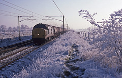 It was a bit cold on this early January afternoon as 'Mainline'  37380 passed near Needham Market with the weekly empty fuel tanks from Ipswich to Cambridge. January 1996 (mikul44171) Tags: hoarfrost backlit contrejour fueltanks citernes oil dieselfuel