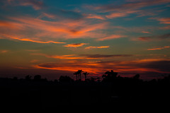 Sunset Palette (Val-of-Ark) Tags: sunset arizona clouds pastels palm trees silhouette horizon