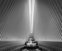New York - Oculus (j2psphoto) Tags: usa new york city nyc newyork black white bw blackandwhite monument architecture oculus canon 5d 5dmarkiv markiv 2470