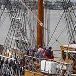 A l'assaut des cordages du Kaskelot, Tall Ships Regatta 2018, Bordeaux, Gironde, Nouvelle-Aquitaine, France. thumbnail