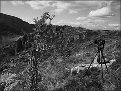 """""""Petit Hohneck"""" avec/with Hasselblad et/and Ilford Delta 100 (JJ_REY) Tags: vosges montagnes moutains hike rando photographie hasselblad 501c distagon5ommf4cft ilforddelta100 nikond700 28mmf28aiscrc alsace france"""