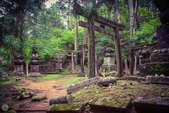 Old cemetery, Koyasan [JP] (ta92310) Tags: travel asia spring 2018 architecture honshu kansai japon japan ciel mur bâtiment koya mont mount mountain koyasan wakayama temple sacred cimetiere cemetery old ancien