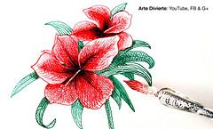 Cómo usar una pluma de vidrio y cómo dibujar una flor de la india (artedivierte) Tags: arte dibujo artedivierte flordelaindia hibisco plumadevidrio boceto artistleonardo tutorial leonardopereznieto tutto3 patreon
