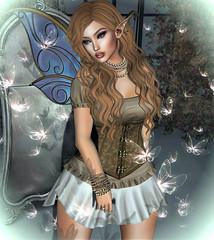 Dream Fairy (Sparkle Mocha) Tags: decoy mandala sl fashion hair fairy dream {anc} swallow noldor elf ears pearls good vibes event mesh avatar secondlife firestorm limerence euphoric lootbox tinker maitreya lara wings