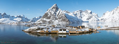 Sakrisøy (Andrew Bloomfield Photography) Tags: lofoten islands andrewbloomfieldphotography fujifilm landscape norway outdoor winter wwwandrewbloomfieldphotographycouk sakrisøy pano panorama landscapebeauty stunning mountain mountains sea seascape warm sky blue bluesky