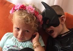 Rosa e nero (biofafoto) Tags: nero rosa principessa batman foto fabio cesalli
