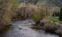 Clear Creek, Golden, Colorado (pmenge) Tags: colorado golden kids clearcreek river
