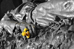 Tribute to the Martyrs (Mersa Photography) Tags: martyr monument tribute homage statue monochrome yellow