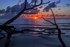 Sunrise at Hunting Island State Park (lightonthewater) Tags: island huntingisland huntingislandstatepark southcarolina atlanticocean sunrise clouds silhouettes beach sand ocean sun sky reflection lightonthewater