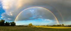 Regenbogen am Abend (Licht und Korn) Tags: regenbogen abend lichtundkorn