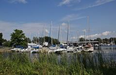 Sackets Harbor on Lake Ontario (Explored-Thank you!!!) (outdoorpict) Tags: harbor sailboats water lake grasses masts clouda blue trees 1812 marina yachting ontario sacketsharbor