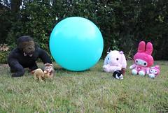 The World Is A Circle (shiroibasketshoes hopper) Tags: circle world creatures bunny bunnies rabbit rabbits gorilla mymelody green blue nature grass losthorizon burtbacharach snuffleupagus balloon lion camel primate