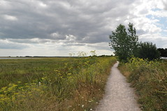 Pegwell Bay 1659 (Kent Country Parks) Tags: summer autumn spring pegwellbay country countryside kentcountryparks kent