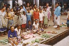 Album4-009b (Stichting Papua Erfgoed) Tags: antoonegging msc stichtingpapuaerfgoed pace papua zuidpapua nieuwguinea nederlandsnieuwguinea irianjaya papuaheritagefoundation voormalignederlandsnieuwguinea