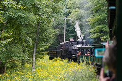 Among the Flowers (nrvtrains) Tags: westvirginia cass logging cassscenicrailway shay steam unitedstates us