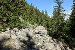Hike to Le Brévent, Lac du Brévent & Aiguillette des Houches (*_*) Tags: chamonix hautesavoie france 74 europe savoie july 2018 summer été sunny hike hiking randonnée marche mountain montagne afternoon hiketolebréventlacdubréventaiguillettedeshouches aiguillesrouges alps alpes