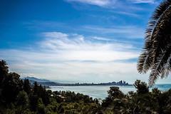 Batumi skyline (Melissa Maples) Tags: batumi batum ბათუმი adjara აჭარა georgia gürcistan sakartvelo საქართველო asia 土耳其 apple iphone iphonex cameraphone მწვანეკეპი mtsvanecape ბოტანიკურიბაღი botanicalgarden blacksea sea water skyline sky blue mountains