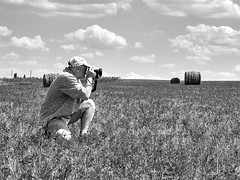 rolls with hay in the field and I with a camera (uiriidolgalev) Tags: rolls with hay field i camera