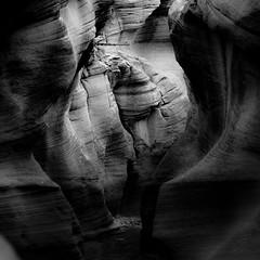 In Canyons 259 (noahbw) Tags: d5000 grandstaircaseescalantenationalmonument nikon utah williscreek abstract autumn blackwhite blackandwhite bw canyon desert erosion monochrome natural noahbw path rock slotcanyon square stone landscape