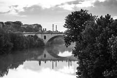 Il Ponte svelato (RM) (Stefano Innocenzi) Tags: fiume ponte biancoenero primopiano paesaggiourbano