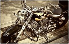 Fotografia Callejera (Street Photography, Lomo) (SamyColor) Tags: konstruktorlomography konstruktor lomography lomo motora motorcycle reflejos reflections camarasplasticas plasticcameras toycameras camarasdejuguete sanjuan oldsanjuan viejosanjuan puertorico color colori colorido colores colors colours sunny16400 film pelicula