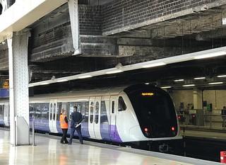 TfL Rail at London Paddington