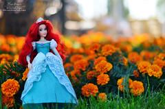 Ariel (Lindi Dragon) Tags: doll disney disneyprincess disneystore dolls ariel little mermaid 2013