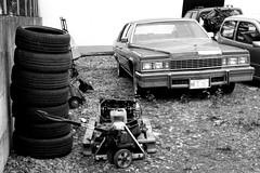 Leyendas sobre ruedas (mike828 - Miguel Duran) Tags: coche car retro vintage antiguo antique abandonado abandoned decayed newtopographics blanco negro bw sony rx100 mk4 m4 iv cadillac