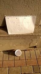 #4Beiner (n0core) Tags: 4beiner haustier вода water hunde sommer cup heis sommer2018 düsseldorf dogs pet becher drink friends trinken freunde summer2018 rath wasser warm summer dusseldorf hot nrw