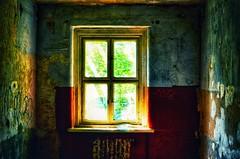 (Antiteilchen) Tags: ruins ruine verlassen abandoned architecture architektur window fenster rotearmee militär military kaserne döberitzerheide germany deutschland