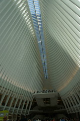DSC07141 (RosieTulips) Tags: oculus worldtradecenter newyork